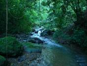 Beautiful Costa Rica land for sale